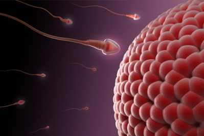 Tips-To-Increase-Your-Sperm-Count
